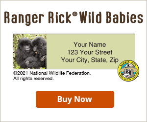 Ranger Rick Wild Babies Address Labels